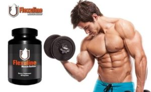 Flexuline Muscle Builder - composition - effets - action