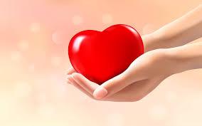 Cardiol - pour l'hypertension - comprimés - prix - action