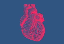 Nutra Cardio - pour le cholestérol - avis - crème - dangereux
