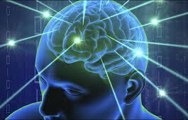 Neurocyclin - comprimés - sérum - effets