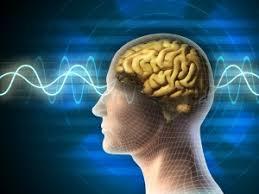 Neurocyclin - dangereux - action - pas cher