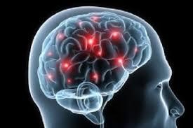 Neurocyclin - pour une meilleure mémoire - France - site officiel - composition