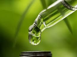 Divine Ease CBD Oil - sérum - effets - prix