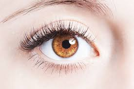 Glasses binoculars ZOOMIES – Amazon – effets – sérum