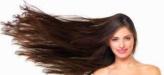 Chevelo Shampoo - croissance des cheveux - France - site officiel - composition
