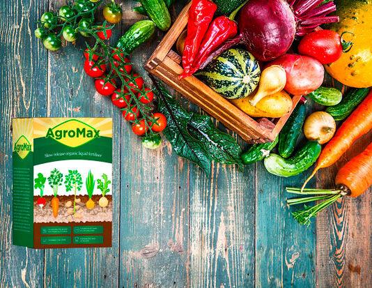 Agromax - achat - pas cher - mode d'emploi - composition