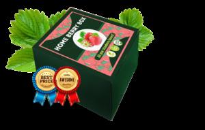 Home Berry Box - achat - pas cher - mode d'emploi - composition